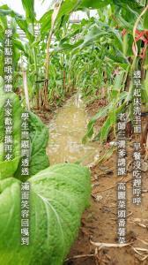 2017-09-28 陳清秀