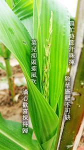 2017-10-13 陳勇仁